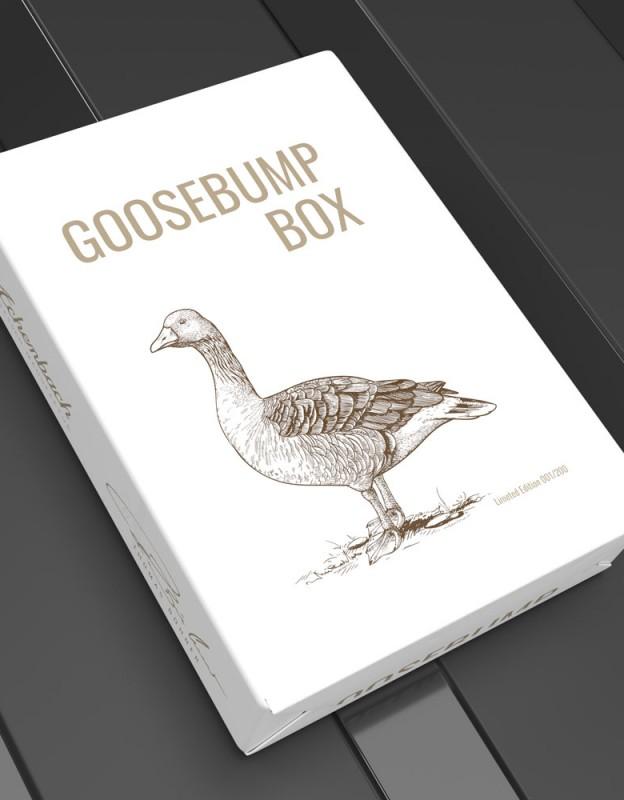 Thomas Buehner Goosebumpbox